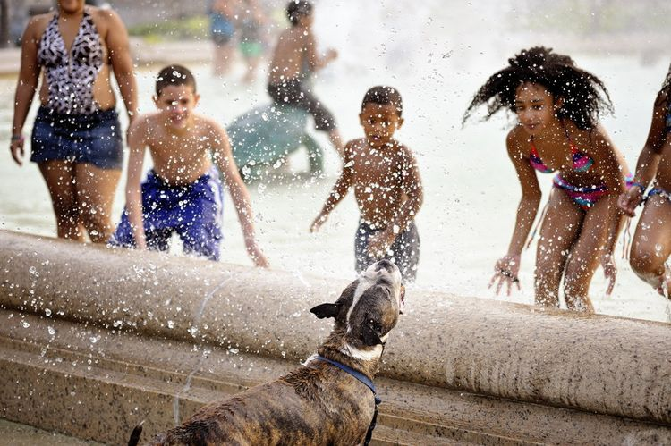 Philadelphia - 2011 July Summer Heatwave  Philadelphia residents do the traditinal dunk in the Swann Memorial Fountain. Temperatures hit 105 degrees with a heat index of 120 today.