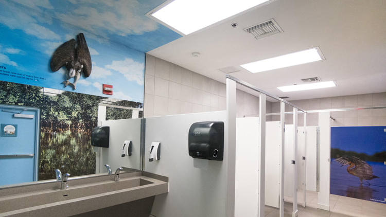 os-pictures-learning-lavatories-at-jn-ding-dar-018
