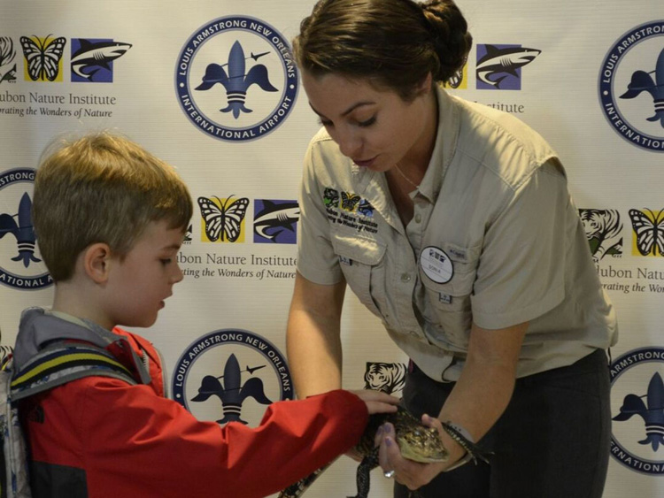 636779136428051418-Travlers-can-pet-a-baby-alligator-at-Louis-Armstrong-New-Orleans-International-Airport.-Courtesy-MSY-Airport